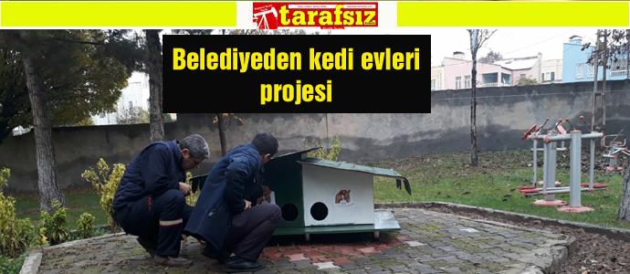 Belediyeden kedi evleri projesi