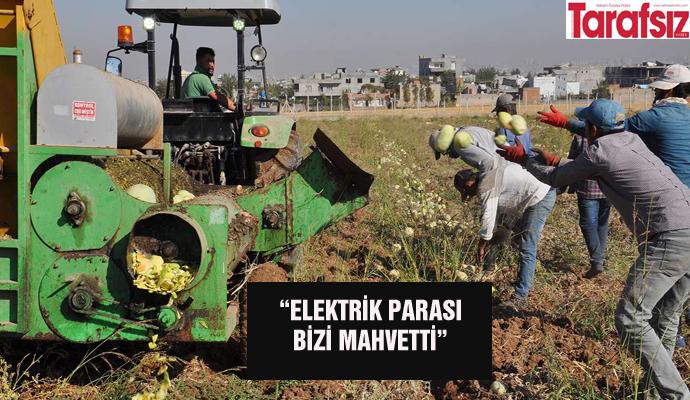 """ELEKTRİK PARASI BİZİ MAHVETTİ"""