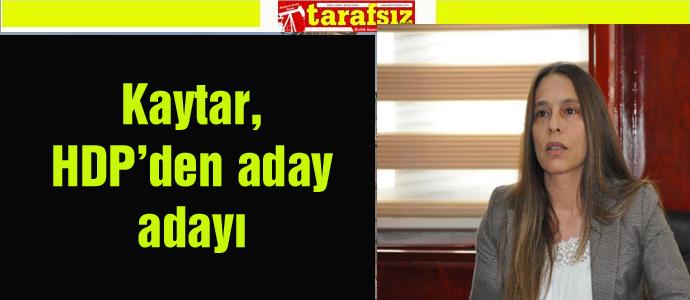 Kaytar, HDP'den aday adayı