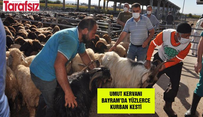 UMUT KERVANI BAYRAM'DA YÜZLERCE KURBAN KESTİ