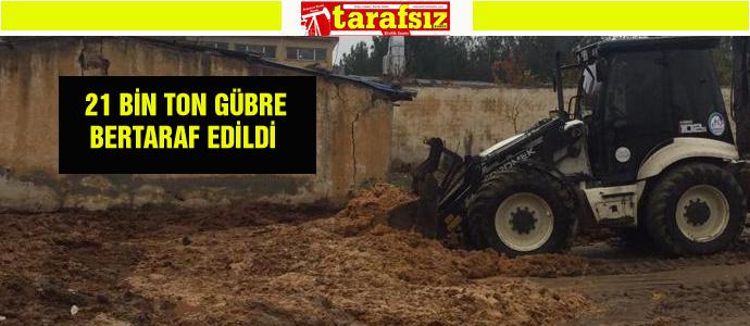 21 BİN TON GÜBRE BERTARAF EDİLDİ