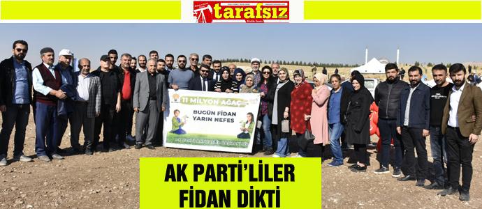 AK PARTİ'LİLER FİDAN DİKTİ