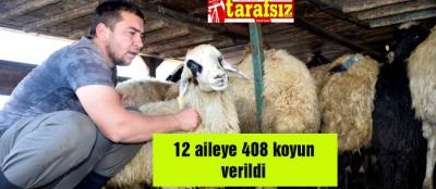 12 aileye 408 koyun verildi