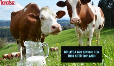 Bir ayda 820 bin 835 ton inek sütü toplandı