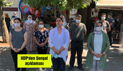 HDP'den Şengal açıklaması