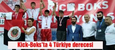 Kick-Boks'ta 4 Türkiye derecesi