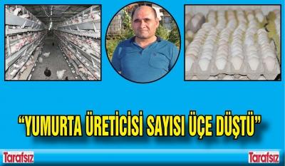 """""""YUMURTA ÜRETİCİSİ SAYISI ÜÇE DÜŞTÜ"""""""